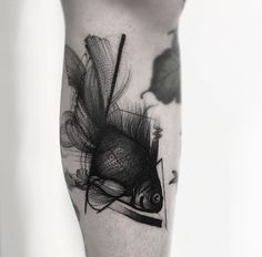 Sketch style goldfish by Frank Carrilho