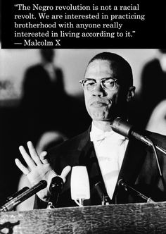 malcolm x and the black panthers