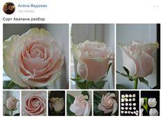 Фотографии Цветы из холодного фарфора и полимерной глины – 440 альбомов | ВКонтакте
