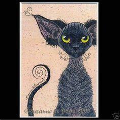 Edit Devon Rex Cat Painting Print Suzanne Le Good | eBay