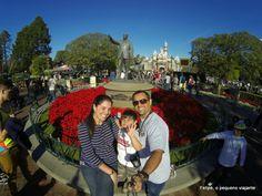 Felipe, o pequeno viajante: Disneyland - o nosso roteiro e as melhores atrações do parque da Califórnia