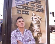 Morrissey and a cat on a billboard | felines & their fellas |