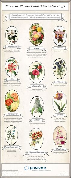 Need help deciding on which types of flowers to include in your funeral flower arrangement? Check out this list of some of the most popular funeral flowers and their meanings. Funeral Flower Arrangements, Funeral Flowers, Wedding Flowers, Casket Flowers, Church Flowers, Wedding Dresses, Collateral Beauty, Flower Meanings, Flowers And Their Meanings