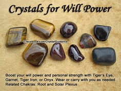 Crystal Guidance: Crystal Tips and Prescriptions - Will Power Top Recommended Crystals: Tiger's Eye, Garnet, Tiger Iron, or Onyx. Additional Crystal Recommendations: Hematite, Rose Quartz, or Sapphire.  Will power is associated with the Root and Solar Plexus chakras.