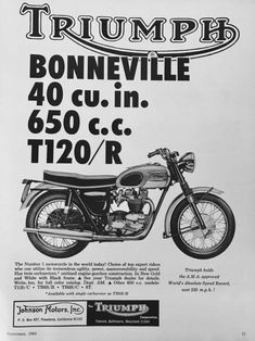 Here Cums Trubble Motorcycle Tips, Motorcycle Posters, Bobber Motorcycle, Motorcycle Quotes, Ninja Motorcycle, Motorcycle Companies, Triumph Motorbikes, Triumph Bonneville, Triumph Motorcycles