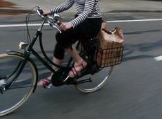 Lovely Bicycle!: The Pashley Princess: a Retrospective from a Former Owner