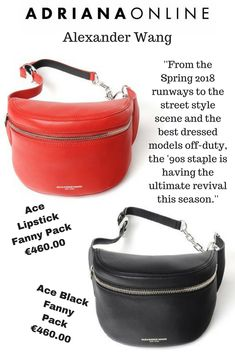 Fanny Packs are back! Alexander Wang Fanny Packs are available on our website! Pick your favorite! Black Fanny Pack, Models Off Duty, Alexander Wang, Your Favorite, Nice Dresses, Street Style, Website, Spring, Bags