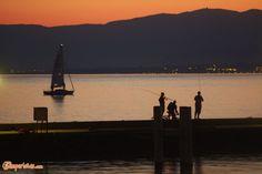 Losanna, città olimpionica   Camperistas.com Travel Around Europe, Rv Campers, Campervan, Golden Gate Bridge, Cn Tower, Switzerland, Building, Buildings, Construction