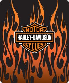 Harley Davidson Logo With Flames (1)                                                                                                                                                      More