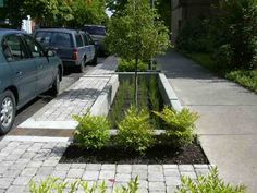 The 12th Avenue Green Street, Portland, Or, project disconnects street stormwater runoff from a storm sewer that drains directly into the Willamette River and manages it on-site using a landscape approach. Stormwater runoff flows downhill along the existing curb until it reaches the first of four stormwater planters. A 12-inch curb cut channels the street runoff into the first stormwater planter. Once inside the planter, the water is allowed to collect until it reaches a depth of six inches.