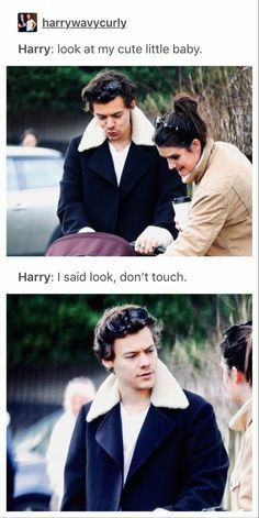 Bwhahahahahahaha day funny memes husband I'm kinda into it One Direction Harry, One Direction Memes, One Direction Fotos, One Direction Pictures, One Direction One Thing, One Direction Fanfiction, Harry Styles Memes, Harry Styles Pictures, Harry Styles Dad