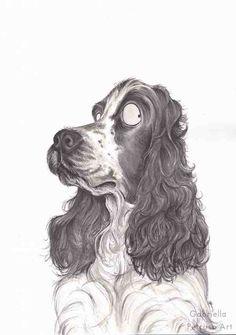 Spaniel dog breed  Fine art print of an by gabriellapetruso