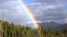 Heart Songs - 04 Rainbow Child (Creator's Promise) - Native American Flute Improv by Ken McGarity Rainbow Eyes, Rainbow Colors, Native American Flute, Photos Hd, Stock Photos, Heart Songs, Foto Real, Under The Influence, In Loving Memory