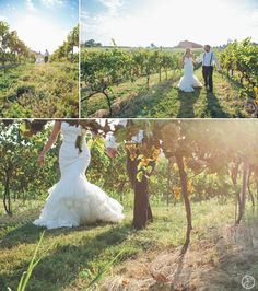 outdoor winery wedding photos in the vinyards