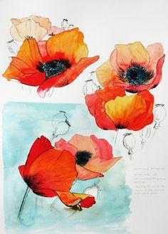 Seaside Studios: A poppy sketchbook page