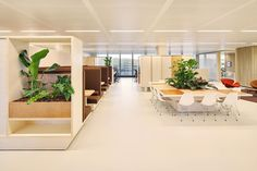 A heritage department store thinks sustainable for its Amsterdam headquarters - News - Frameweb Corporate Office Design, Corporate Interiors, Office Interiors, Amsterdam, Digital Retail, Happy Employees, Fluted Columns, Leafy Plants, Plant Basket