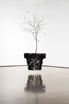 Korean artist Seon Ghi Bahk recreates man-made structures by repurposing natural resources, charcoal in particular, and suspending them with transparent nylon thread.