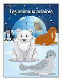 Les animaux polaire, activités pour enfants.