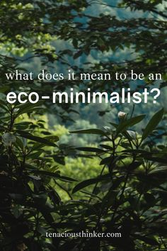 In this in-depth introduction to Eco Minimalism, we discuss the development of the movement that started as a set of principles to designing buildings with minimal environmental impacts to a lifestyle like zero-waste. Eco-minimalism can be described as using less resources while taking care of yourself and your community. #environmentallyfriendly #environmentalist #Environmentalism #ecoconscious #EcoLiving #EcoFriendly #ecolife #ecowarrior #ecolifestyle #ecoblogger #greenliving #ecominimalism Sustainable Design, Sustainable Living, Earth School, Environmental Ethics, Save Mother Earth, Green Living Tips, Physical Environment, Green Business, Environmentalist