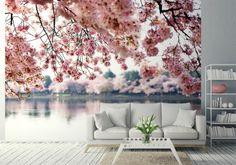 Fototapeta Kwiaty Wiśni