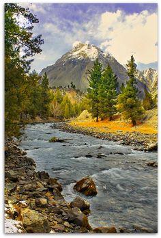 Nalter Valley   Pakistan  It looks like a oil painting