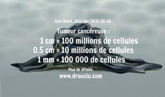 Les cellules cancéreuses