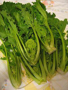 """""""Der Stängelkohl (Brassica rapa var. cymosa, synonym: Brassica rapa sylvestris) ist eine Varietät des Rübsens (Brassica rapa) aus der Familie der Kreuzblütler (Brassicaceae). Stängelkohl wird je nach Gegend auch Rübstiel, Rappa, Cima di Rapa oder Broccoli raab genannt und als Gemüse genutzt."""""""