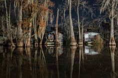 Vadia by Frank Relle Flash Forward Festival Boston Night Photograph, Swamps, Louisiana, Houseboat, Night, lit, long exposure.  Swamps, bayous, houseboats, Louisiana, night, fishing, cypress, lit