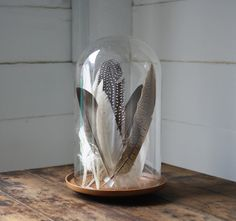 vintage glass display dome by littlebyrdvintage on Etsy Glass Dome Display, Glass Domes, Cloche Decor, Non Floral Centerpieces, Glass Bell Jar, Jar Art, Diy Interior, Home And Deco, Farmhouse Chic