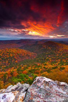 Autumn Palette - Flatside Pinnacle, AR | Flickr #VisitArkansas