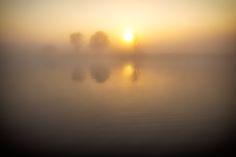 Misty by David Buhler on 500px