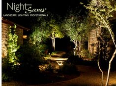 Landscape Lighting using LED cool white and warm white lighting.  One halogen light in this shot, can you find it?  http://www.night-scenes.com