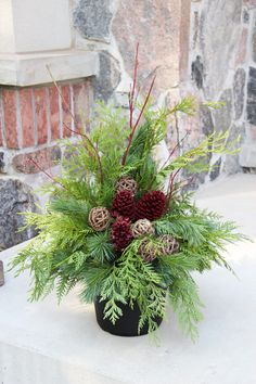 Outdoor Christmas Planter - like the red pine cones Outdoor Christmas Planters, Christmas Urns, Christmas Greenery, Christmas Flowers, Christmas Holidays, Christmas Wreaths, Christmas Crafts, Outdoor Planters, Christmas Ideas