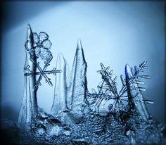gercek-kartanesi 1 snowflake photography - Google Search