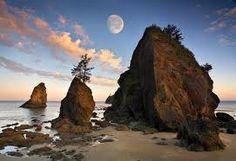 Kalaloch Beach, Washington State  Beautiful!!