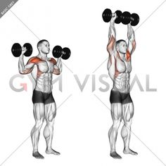 Dumbbell One Arm Shoulder Press - Gym visual Gym Workouts For Men, Workout Routine For Men, Chest Workouts, At Home Workouts, Weekly Workouts, Push Workout, Workout Days, Gym Workout Tips, Dumbbell Workout