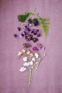 color palette   wild flower love   via: designlovefest