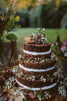 fruit cake naked cake