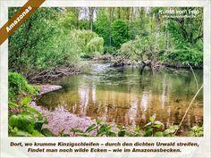 Kunst vom Feld: Amazonas – www.kunstvomfeld.de