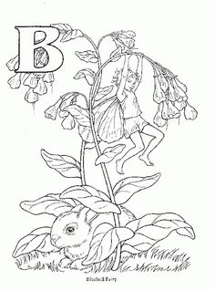 Cicely Mary Barker\'s Flower Fairies for you to color. These flower ...