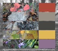 (2) Etiqueta #colorinspires en Twitter