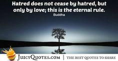 Buddha Quote - 25