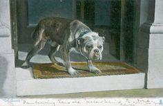 Old Postcard PC Bulldog Dog Tuck's Photochrome 1425 England 1906 On Guard. Pinned by Judi Crowe.