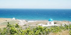 Typische blaue Kirchtürme findet man auf Santorin überall © Carina Dieringer Carina, Kirchen, Taj Mahal, Building, Travel, Pictures, Backdrops, Nice Asses, Viajes