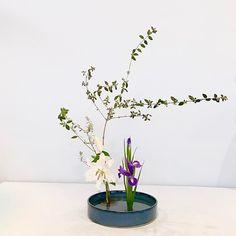 #池坊 #いけばな教室 #ロンドン #生花 #ikebana #ikebanaclass #japaneseflower #shoka Arranged by Taru