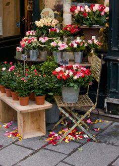 A little display of flowers outside a store in Paris