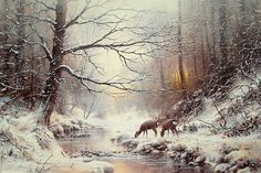 A Warm Glow of Winter. Acrylic on Watercolour paper, size x SOLD A winter depiction of woodland that draws me like a magnet. Feel free to contact me on my website - by Joe Hush. Watercolor Landscape, Landscape Paintings, Watercolor Paintings, Painting Snow, Winter Painting, Dream Pictures, Winter Pictures, Kinkade Paintings, Winter Szenen