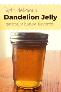 An old-fashioned jelly that tastes similar to honey. Mild and sweet, this pretty jelly is like Spring in a Jar! Vegan Gluten Free, Vegan Vegetarian, Dandelion Jelly, Jelly Recipes, Pressure Canning, Preserving Food, Canning Recipes, Mom Blogs, Preserves