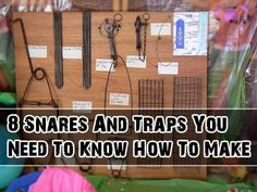 8 Snares And Traps You Need To Know How To Make - SHTF Preparedness