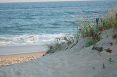 The dunes at Hither Hills, just outside of Montauk - are like no other.  www.flickr.com/photos/maureen_lederhos/